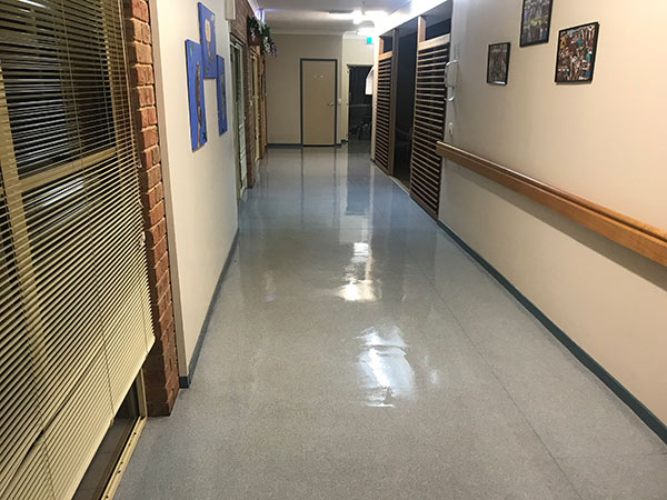 vinyl floor cleaning and sealing